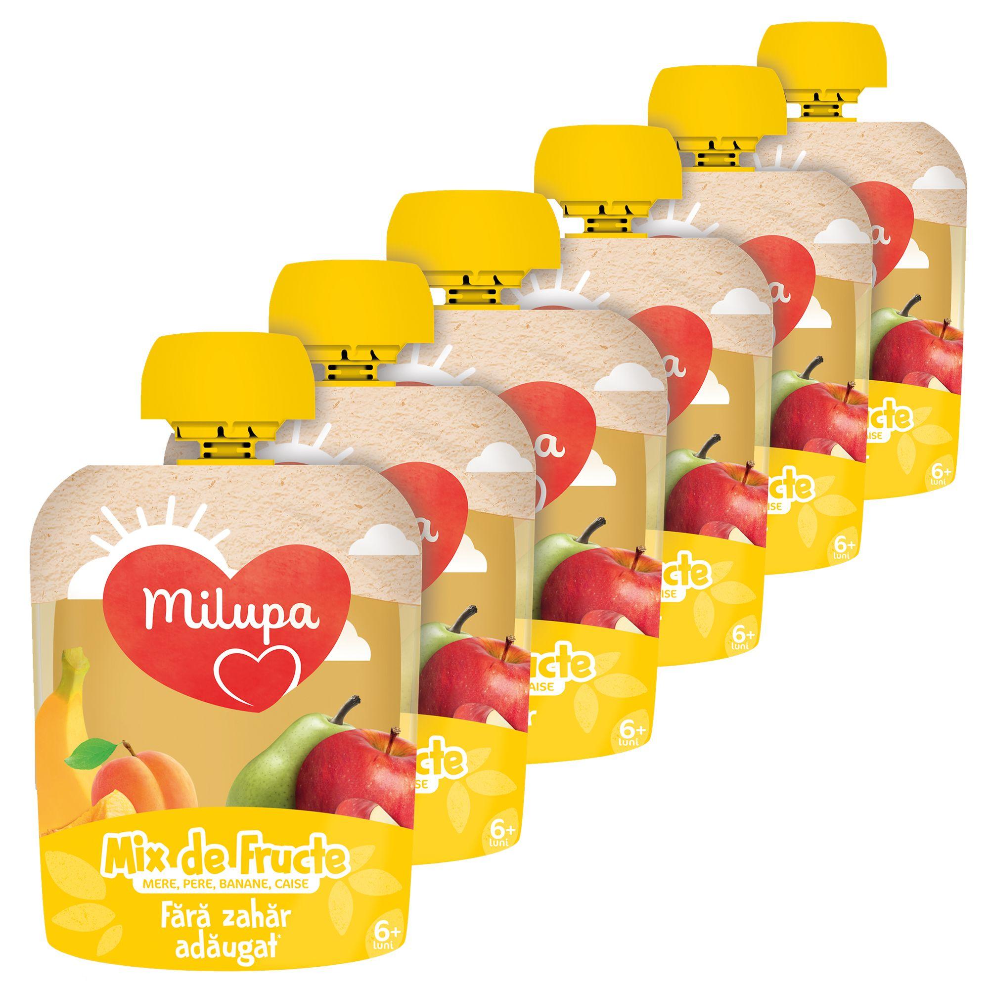Pachet 6 x Piure de Fructe(mere, pere, banana, caise), Milupa, 90g
